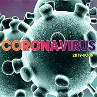 Coronavirus gồm có mấy chi? Sars-cov 2 thuộc chi nào?