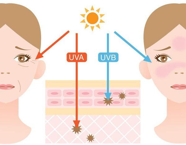 Tác hại của tia UVB và UVA
