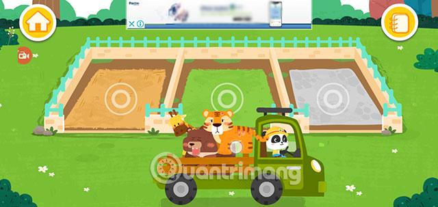 baby panda chăm sóc các loài động vật