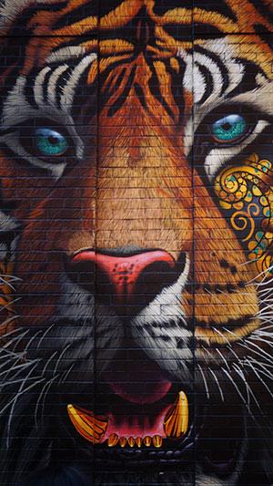 hình graffiti đẹp