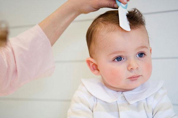 Cách trị chấy bằng cắt tóc ngắn