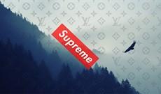 Hình nền Supreme, ảnh Supreme cho điện thoại