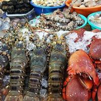 Cách chọn hải sản tươi ngon