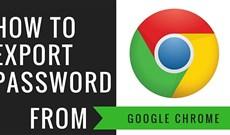 Cách xuất mật khẩu lưu trên Chrome, tải mật khẩu trên Chrome về máy tính