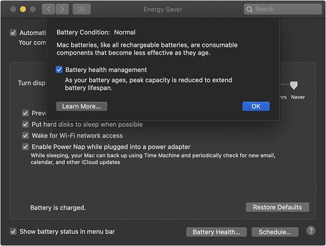 Một phần giao diện Battery Health