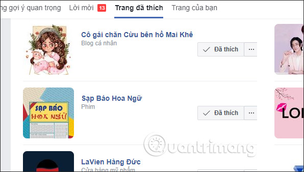 Cách xem các Page đã thích trên Facebook - Ảnh minh hoạ 5