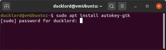 Terminal trên Linux sẽ không hiển thị gì khi bạn nhập mật khẩu