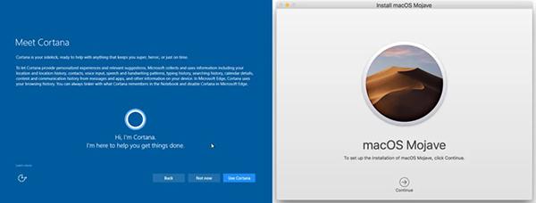 Windows 10 and macOS setup