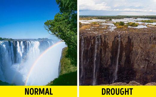 Chúng ta khai thác 175% khả năng chịu đựng của Trái đất