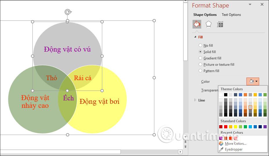 Cách vẽ sơ đồ tập hợp trong PowerPoint - Ảnh minh hoạ 7