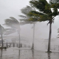 Tại sao bão hay vào miền Trung nước ta?