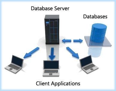 Các Database server là gì?