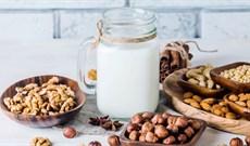 Máy làm sữa đậu nành có làm được sữa hạt không? Hướng dẫn chi tiết cách làm
