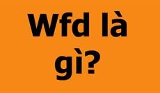 Fwd là gì? Fwd là viết tắt của từ gì?