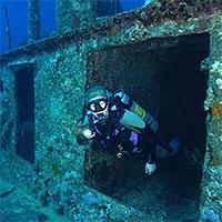 Lợi ích không ngờ của những con tàu đắm với hệ sinh thái biển