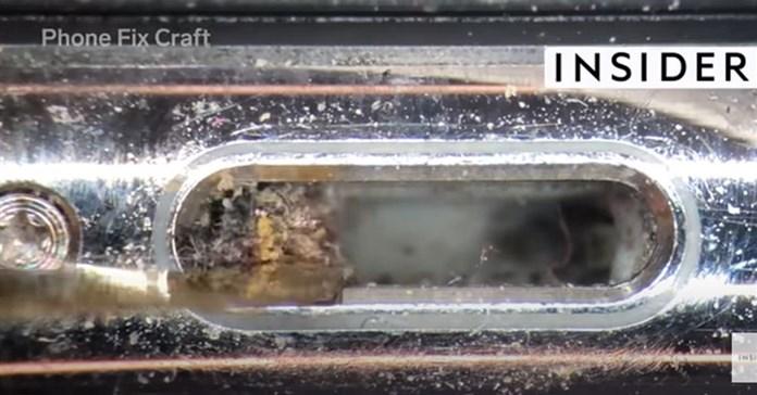 Video vệ sinh iPhone dưới kính hiển vi khiến nhiều người kinh hãi