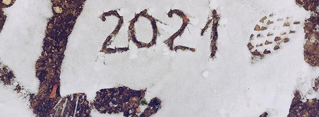 Ảnh bìa Facebook Chúc Mừng Năm Mới 2021 - Ảnh minh hoạ 8