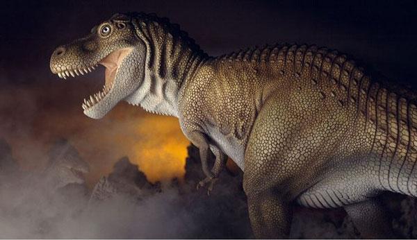 Cho đến nay, các nhà khoa học vẫn chưa tìm ra tác dụng của 2 chi trước của khủng long bạo chúa