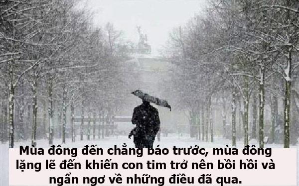 những câu nói hay về mùa đông, cap về mùa đông, stt hay và ý nghĩa cho mùa đông