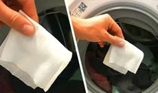 Cho thứ này vào máy giặt, quần áo không còn dính xơ vải, lông và tóc