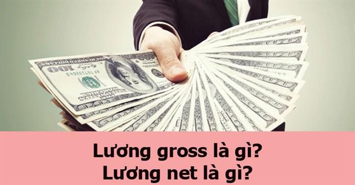 Lương gross là gì? Lương net là gì? Phân biệt lương gross và lương net