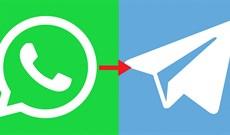 Cách nhập tin nhắn từ WhatsApp sang Telegram
