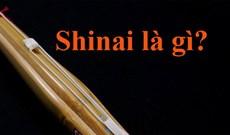 Shinai là gì?