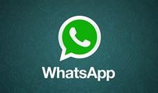 Download WhatsApp 2.2102.9