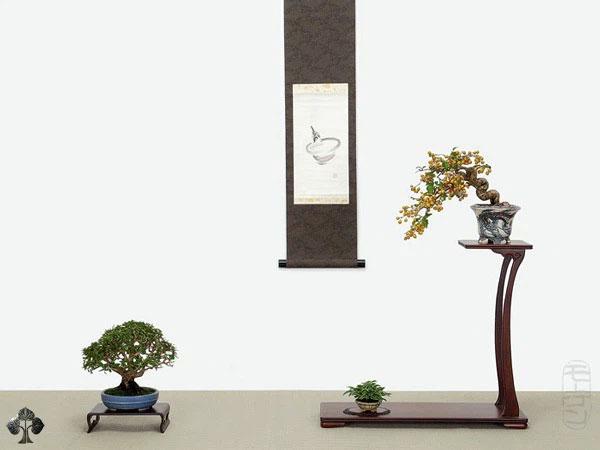 Tạo kiểu bonsai, bởi Morten Albek