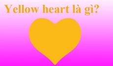 Yellow heart là gì? Ý nghĩa của Yellow heart
