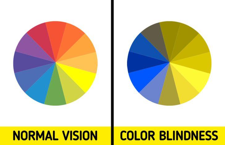 Màu vàng dễ gây sự chú ý nhất trong tất tất cả các màu