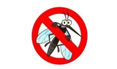 Top 5 đèn bắt muỗi tốt nhất, giá chỉ từ 149.000 đồng