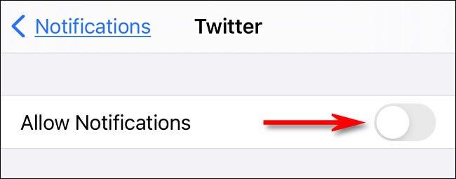 Cách tắt, tùy chỉnh thông báo từ Twitter trên iPhone và iPad - Ảnh minh hoạ 4