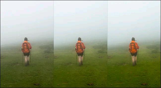 Từ trái sang phải: Hình ảnh gốc, Vibrance +50, và Saturation +50. Đối với bức ảnh này, mức điều chỉnh Vibrance +50 rõ ràng là điểm nhấn chính. Nó làm cho cỏ nhìn sống động hơn mà không khiến chiếc ba lô màu cam trông quá rực rỡ