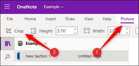 Làm sao để cắt ảnh trong ứng dụng OneNote? - Ảnh minh hoạ 2