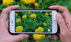 Cách bật tính năng quay video HDR trên iPhone