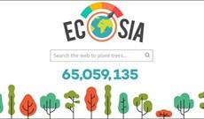 Ecosia là gì? Tại sao nên dùng Ecosia?