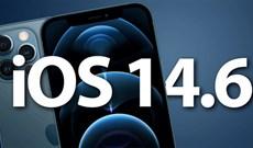 iOS 14.6: Apple phát hành bản beta 1 cho các nhà phát triển