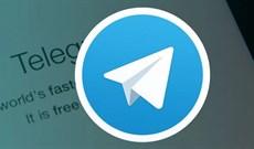 Đây là lý do tại sao Telegram đang trở thành miếng mồi béo bở cho hacker