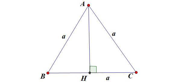 Tính đường cao trong tam giác đều