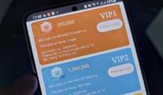 Cảnh báo: Tham gia ứng dụng đa cấp 'ấp trứng', 'nuôi bò online', nhiều người mang nợ