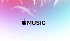 Cách chia sẻ lời bài hát từ Apple Music trên iPhone hoặc iPad