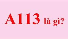 A113 là gì? Tại sao A113 xuất hiện trong nhiều bộ phim?