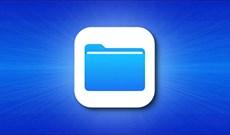 Cách sao chép ảnh, video từ ứng dụng File sang thư viện Photos trên iPhone, iPad