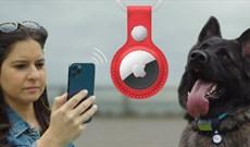 Cuộc thách đấu giữa AirTag - thiết bị tinh vi mới của Apple và chó nghiệp vụ