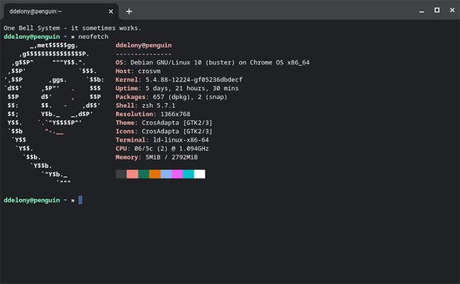 Crostini là một môi trường phát triển Linux được container hóa chạy trong Chrome OS