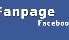 Facebook đang bị lỗi không ghim được bài, đăng ảnh và video cũng gặp sự cố