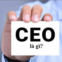 CEO là gì? CEO học ngành gì?