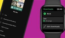 Người dùng hiện có thể nghe nhạc Spotify ngoại tuyến trên Apple Watch