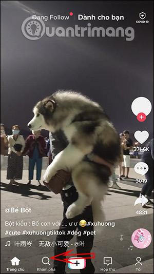 Cách quay video filter Công chúa chạy trốn trên TikTok